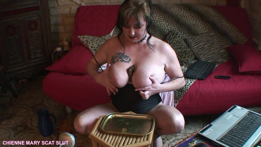 Webcam Scat Show - HD 720p MPEG-4 Video 1280x720 25.000 FPS 4133 kb/s - (Actress: Chienne Mary French Scat Slut 2018)